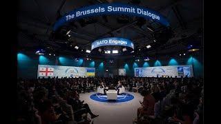 Возможно ли вступление Грузии и Украины в состав НАТО? Обсуждение на RTVI