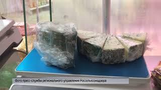 В Ярославле сожгли несколько килограммов санкционного сыра