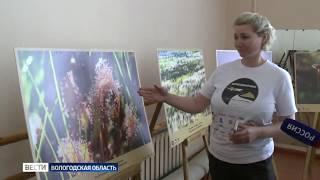Вологодская область стала участником всероссийского проекта «Заповедный пояс»