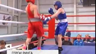 Боксёрский турнир памяти гвардии подполковника Анатолия Лебедя станет в Белгороде традиционным