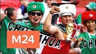 Что удивило в России иностранных болельщиков ЧМ-2018 - Москва 24