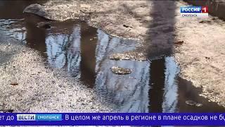В Смоленскую область пришла полноценная весна