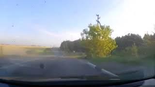 Видеорегистратор снял ДТП с тремя погибшими в Подмосковье