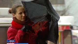 МЧС сообщает об ухудшении погоды в Калининградской области