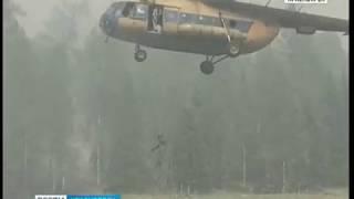 В Красноярском крае горит лес