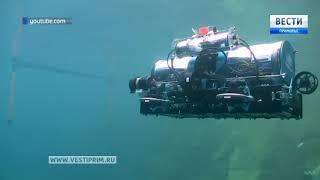 Студенты Владивостока стали финалистами международного турнира по подводной робототехнике