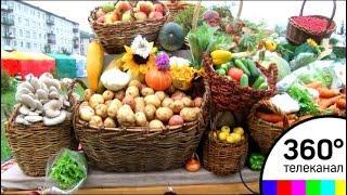 В Подмосковье откроется платформа «Цифровой фермер»