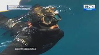 Фильм «Подводные охотники»