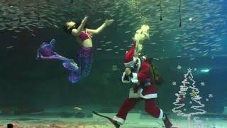 Подводный Санта