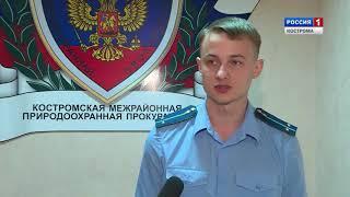 В Костромской области выясняют причины массовой гибели рыбы в реке Солоница