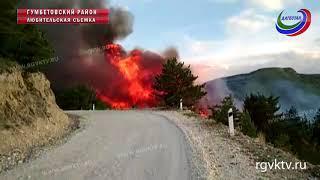 Пожар в Гумбетовском районе. В лесу загорелась трава