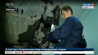 Анастасия Сальникова. Ремонт двигателей автомобилей
