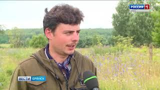 В Севском районе работают поисковики из Алтайского края