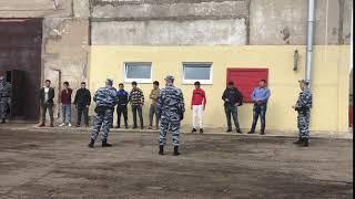 На предприятии Фурмановского района мясо разделывали нелегалы из Таджикистана