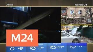Что известно о последствиях шторма в Подмосковье - Москва 24