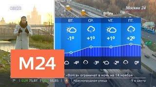 """""""Утро"""": холодная погода ожидается в Москве 12 ноября - Москва 24"""