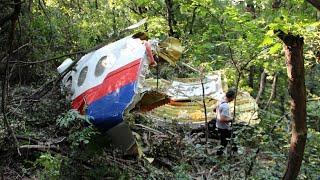 Новая версия Минобороны о крушении MH17: как российский «Бук» попал в Украину?