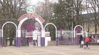 5-летняя девочка упала с лошади и слома позвоночник в Ставрополе