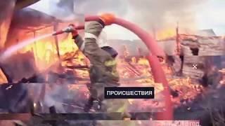 """""""Происшествия"""" в ЕАО: лобовое столкновение, задержание наркокурьера, пожары(РИА Биробиджан)"""