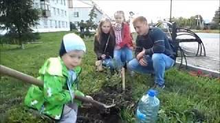 Полсотни молодых вишен высадили в Ялуторовске в рамках фестиваля для семей