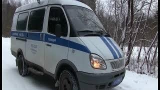 В Ярославской области браконьер застрелил беременную лосиху