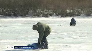 В парке «Русский Север» пройдет акция по спасению рыбы от замора