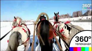 В Иркутской области устроили забег на русских тройках