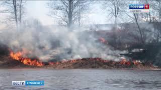 Смоленщине угрожают лесные пожары