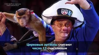 Факты о Цирке