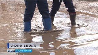 Башкирские школьники ходят на учебу по болоту