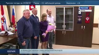 Пермь. Вести Спорт 22.08.2018