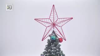 В Заозерном установили елку, которая прежде стояла на центральной площади