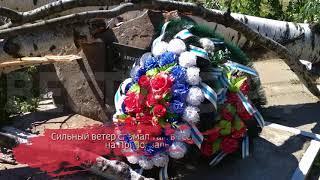Береза рухнула на памятник в Бабаево