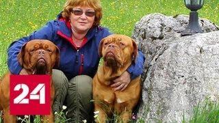 Трагедия в Подмосковье: опыт не спас заводчицу собак от смерти - Россия 24