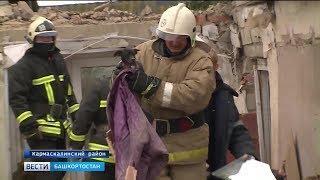 В Башкирии во время взрыва газа в жилом доме выжил той-терьер