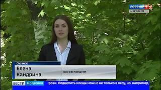 Клещи продолжают нападать на жителей Мордовии