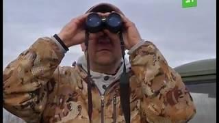 Как выживают уральские охотоведы в разгар сезона?