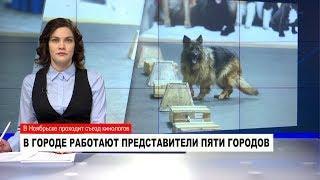 НОВОСТИ Обзор за неделю от 10.02.2018 с Ольгой Поповой