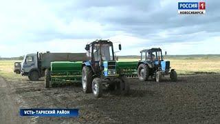 Сельхозпредприятия Усть-Таркского района получат поддержку от областных властей