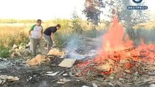 Волонтеры из Пензы и Воронежа спасают Бессоновку от свалок