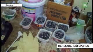 Задержали руководителя организации, занимавшейся незаконным производством медицинских изделий - ТНВ