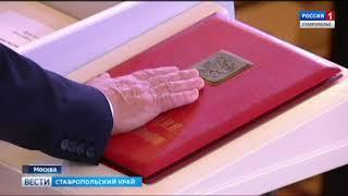 Ольга Тимофеева: работать в команде президента