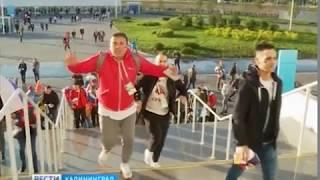 В Калининграде три матча ЧМ-2018 посмотрели около 100 тысяч зрителей