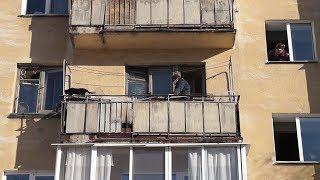 Зоозащитники изъяли кошек в уфимской квартире