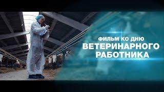 Фильм о работе Главного Управления Ветеринарии по Саратовской области