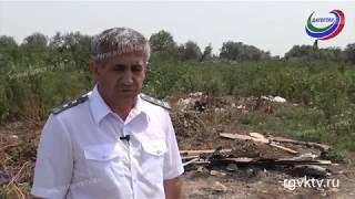 Незаконная мусорная свалка выявлена в Кизилюртовском районе Дагестана