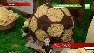 Пять дней до Чемпионата мира по футболу - ТНВ