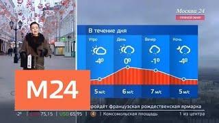 """""""Утро"""": небольшой снег ожидается в столичном регионе 21 ноября - Москва 24"""