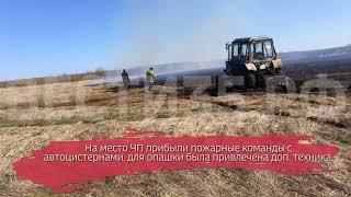 Обширный пал травы произошёл в Вологодской области