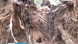 В Лесосибирске ликвидируют последствия мощного урагана